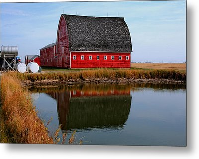 Pond Reflections Metal Print by Larry Trupp