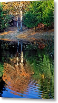 Pond Reflections Metal Print by William McEvoy