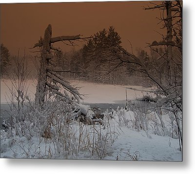 Metal Print featuring the photograph Pond Scape by Mim White
