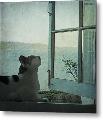 Pondering Metal Print by Sally Banfill