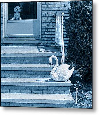 Poodle And Swan Metal Print