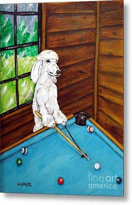 Poodle Plying Pool Metal Print by Jay  Schmetz