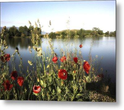 Poppies At Lake Metal Print
