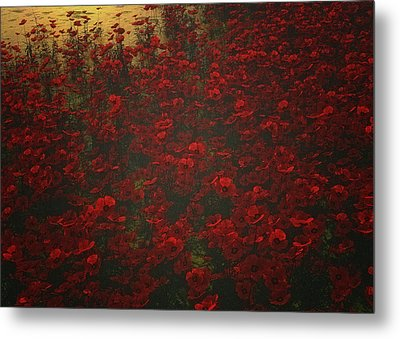 Poppies In The Rain Metal Print