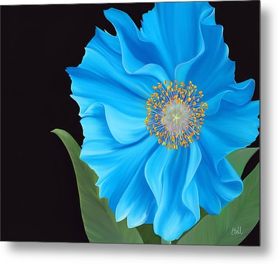 Poppy 2 Metal Print by Laura Bell