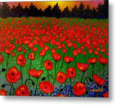 Poppy Carpet  Metal Print by John  Nolan