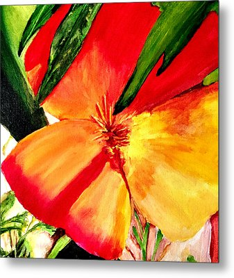 Poppy Metal Print by Dana Patterson