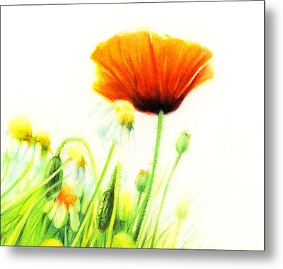 Metal Print featuring the drawing Poppy Flower by Natasha Denger