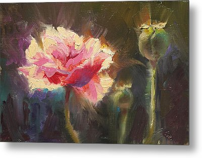 Poppy Glow Metal Print by Karen Whitworth