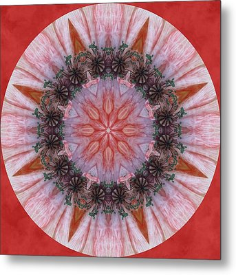 Poppy In My Garden In A Circle Metal Print by Trina Stephenson