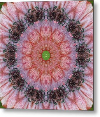 Poppy In My Garden Metal Print by Trina Stephenson