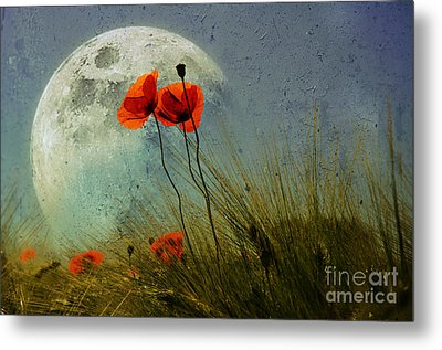 Poppy In The Moon Metal Print by manhART
