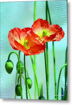 Poppy Series - Quite Metal Print by Moon Stumpp
