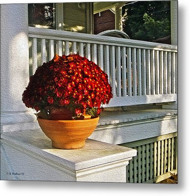 Porch Beauty Metal Print by Brian Wallace