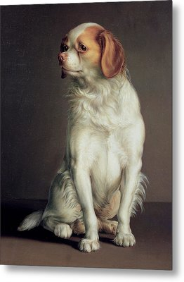 Portrait Of A King Charles Spaniel Metal Print by Louis Leopold Boilly