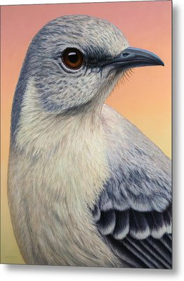 Portrait Of A Mockingbird Metal Print by James W Johnson