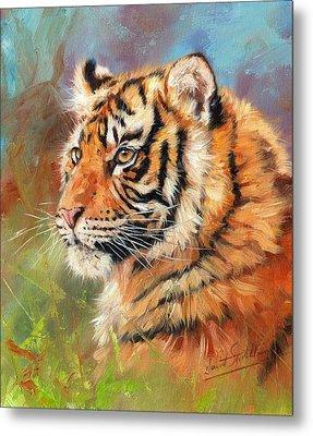 Portrait Of A Young Amur Tiger Metal Print
