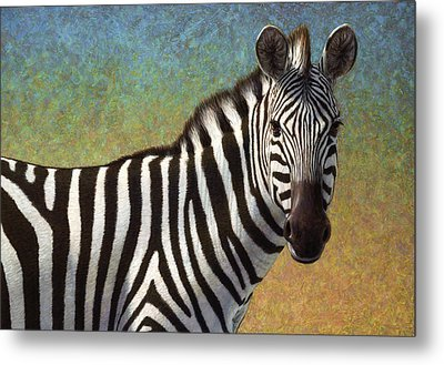 Portrait Of A Zebra Metal Print by James W Johnson