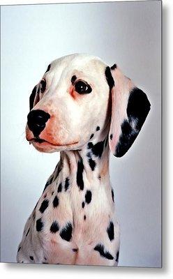 Portrait Of Dalmatian Dog Metal Print by Lanjee Chee