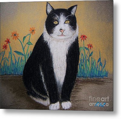 Portrait Of Teddy The Ninja Cat Metal Print by Reb Frost