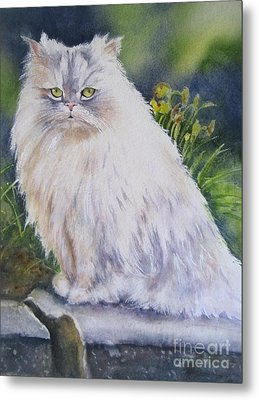 Portrait Of White Cat Metal Print by Patricia Pushaw