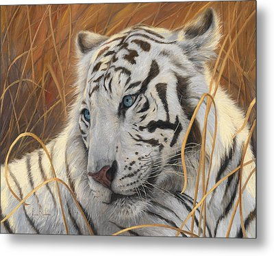 Portrait White Tiger 1 Metal Print by Lucie Bilodeau