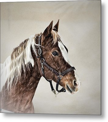 Posed Metal Print by Gary Smith