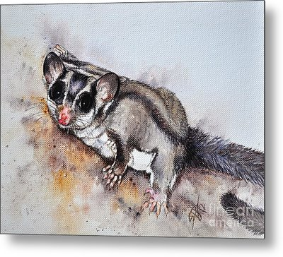 Possum Cute Sugar Glider Metal Print by Sandra Phryce-Jones