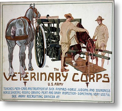 Poster Veterinary Corps Metal Print by Granger