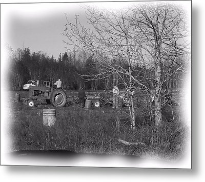 Potato Harvest 1 Metal Print