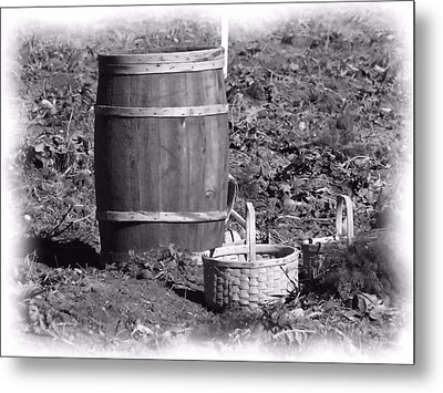 Potato Harvest 13 Metal Print