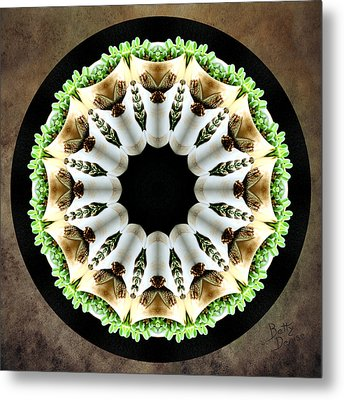 Metal Print featuring the photograph Potted Plant Kaleidoscope by Betty Denise
