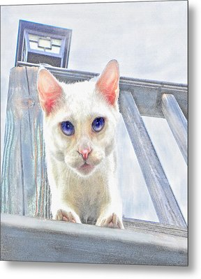 Metal Print featuring the digital art Pounce by Jane Schnetlage