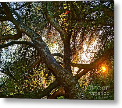 Power Entwined Metal Print by Gem S Visionary