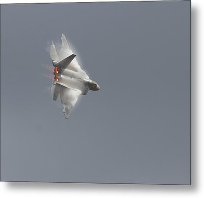 Power Of The Raptor Metal Print
