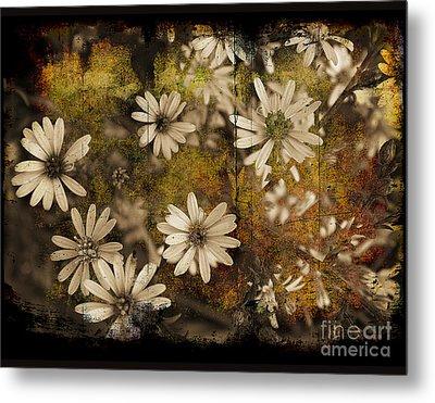 Prairie Flowers Metal Print by Jim Wright