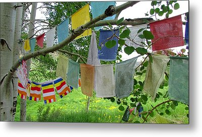 Metal Print featuring the photograph Prayer Flags And Aspen by Brenda Pressnall