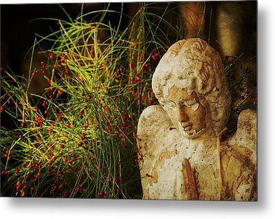 Praying For Peace Metal Print by Terry Rowe