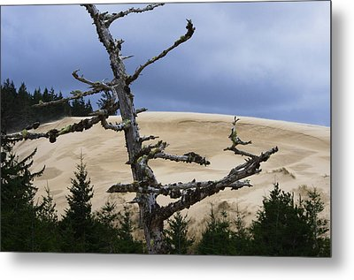 Metal Print featuring the photograph Pre Storm by Adria Trail