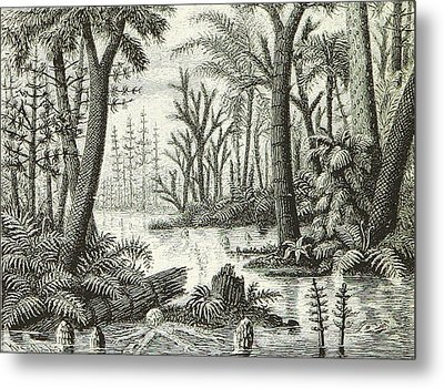 Metal Print featuring the photograph Prehistoric Flora, Carboniferous by British Library