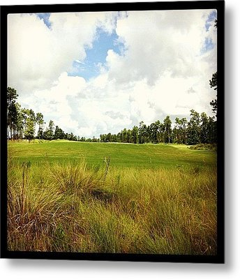 Preserve  Metal Print by Scott Pellegrin