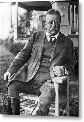 President Theodore Roosevelt Metal Print