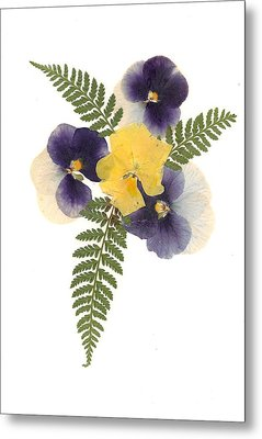 Pressed Pansies Metal Print