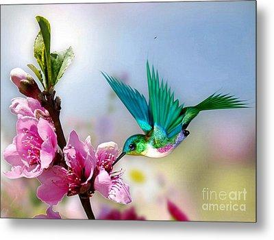 Pretty Hummingbird Metal Print