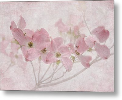Pretty In Pink Metal Print by Angie Vogel