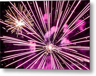 Pretty In Pink Metal Print by Suzanne Luft