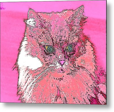 Pretty Kitty In Pink Metal Print by Kathy Budd