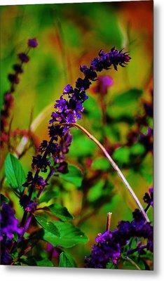 Pretty Purple Plant Metal Print