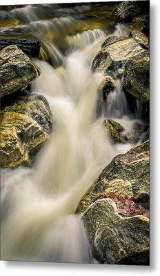 Priest Creek Metal Print
