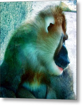 Metal Print featuring the photograph Primate 1 by Dawn Eshelman